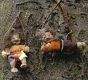 Billede for kategorien 28 cm. troldebørn